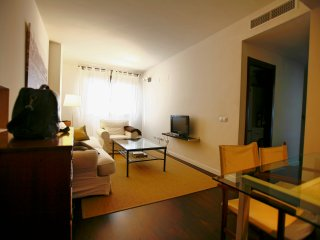 3BR  Apartment next to Center and River, PARKING FREE, Sevilla