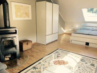 Schickes 3-Raum Appartment mit Kaminofen, Ilmenau