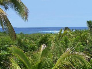 Vacation Rentals Big Island Oceanview Pualani Tropical Home, Kapoho, Ocean View
