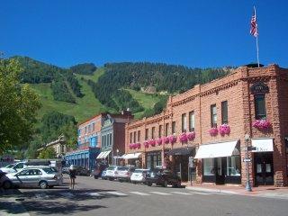 Mountain Laurel Luxury ~ RA86743, Aspen