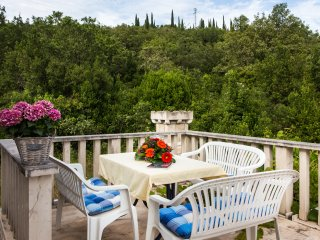 Apartments Villa Maslina - Two Bedroom Apartment with Terrace and Garden View, Cilipi
