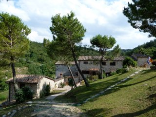 'Il Giardino' - 3BR/3BA apartment on Tuscan Estate in the Chianti