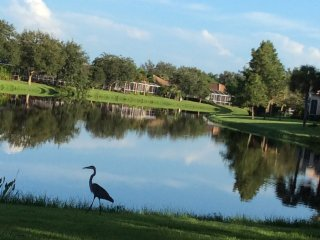 Beautiful water view home near gulf beach and golf, Port Charlotte
