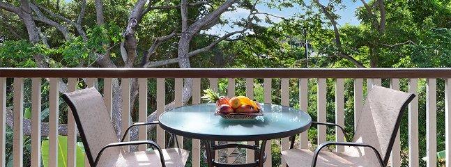 Waikomo Stream Villas #432, Koloa