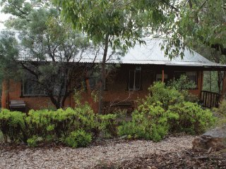 Shady Creek eco Pet Friendly Cabin, Mudgee