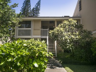 Turtle Bay Condo - AC, near beach. On last minute rates till end of the year!