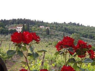 6 bedroom Villa in Rignano Sull arno, Tuscany, Italy : ref 2373075, Rignano sull'Arno