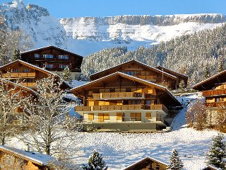 1 bedroom Apartment in Grindelwald, Bernese Oberland, Switzerland : ref 2297275