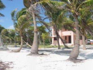 Caribbean beach house on coconut plantation