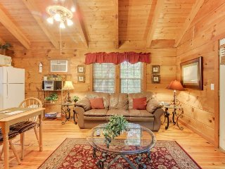Dog-friendly log cabin w/hot tub, screened-in deck & heart-shaped jetted tub!, Sautee Nacoochee
