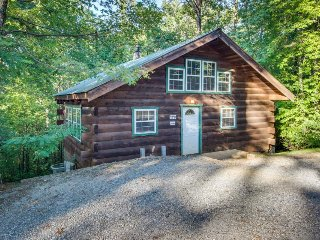 Secluded, dog-friendly cabin - screened-in deck w/ hot tub plus in-room Jacuzzi, Sautee Nacoochee