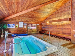 Ski-in/ski-out condo w/ shared hot tub, pool, & entertainment - dogs ok!