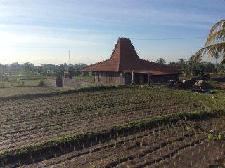 Villa D'Carik 3: opening November 2016, Sayan