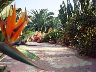 maison climatisée dans un beau jardin ixotique
