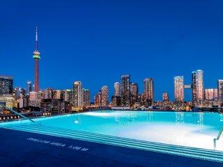 Amazing Toronto Location - 1 Bdrm King West Loft!