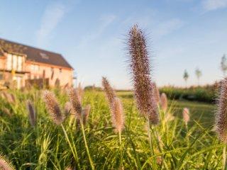 WEI: Glooiing van de velden in je interieur, Herzele