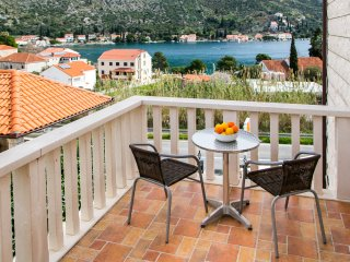 Apartments Zaton Bay - Studio with Terrace and Sea View - AP. 1