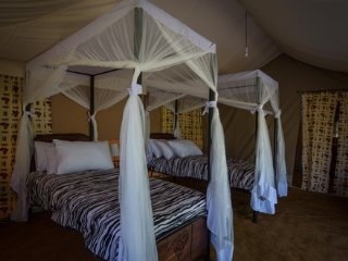 Double Tent- Serengeti Acacia Camps