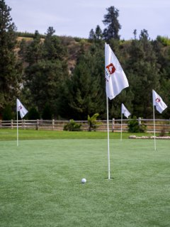 The Quail's Egg offers you endless practice on a professional grade green.