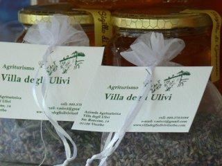 agriturismo villa degli ulivi