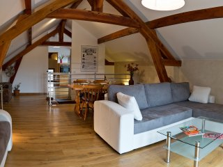 Ecological flat Paris Disneyland for 2 to 5 people, Lagny-sur-Marne
