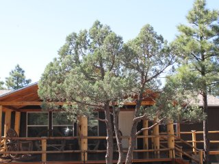 Tranquil Cabin In The Woods! Brand New in Pinetop!, Pinetop-Lakeside