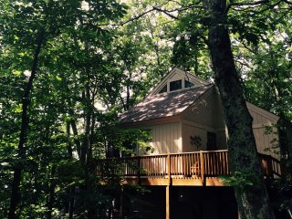 The TreeTop Flyer Guest Home, Wintergreen