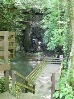 Bench,Rock,Vine,Outdoors,Pond