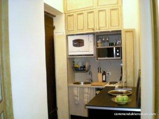 Romantic Renaissance Apartment in Historic Roman Palazzo ~ RA90588