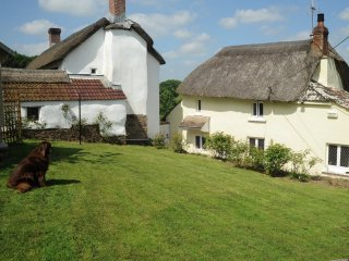 46198 Cottage in Chulmleigh, Coldridge