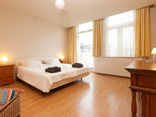 The Queen - Great apartment next to the Vondelpark and all museum, Amsterdam