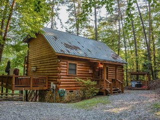 CHERRY ACRE- 2BR/2BA- CHARMING CABIN ON CHERRY LAKE SLEEPS 6, CANOE, STAND UP PADDLE BOARD, HOT TUB, PRIVATE DOCK FOR FISHING, FIRE PIT, CHARCOAL GRILL, WOOD BURNING FIREPLACE, LOCATED ON SECTION 7 OF THE BENTON MACKAYE TRAIL! STARTING AT $125 A NIGHT!, Blue Ridge