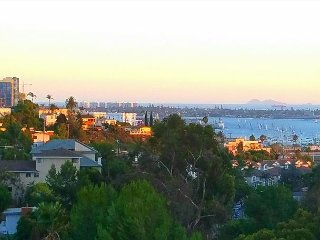 Open, Sunny 1BR in San Diego – Private Hot Tub!