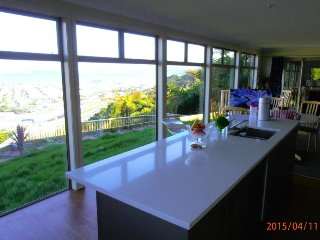 Viewtiful Guest House Executive, Wellington
