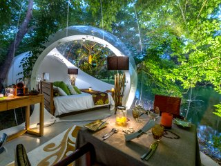 Bubble Lodge : expérience exclusive avec la nature