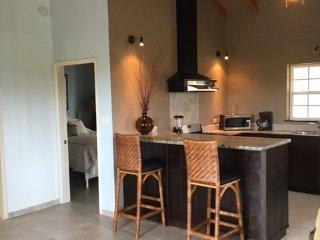 Beautiful designer created apartment with pool, Placencia