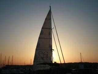 Sailing Yacht Alove 60'