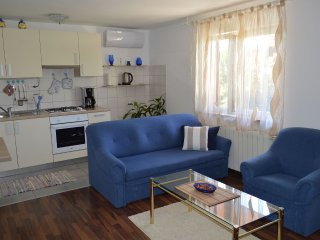 Apartment Stefi-barbecue, terrace and parking, Rijeka