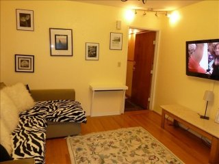 Extraordinary 1 Bedroom Apartment in San Francisco Near UCSF