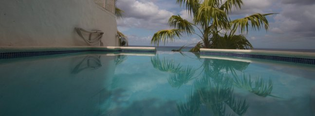 Salt water infinity edge pool