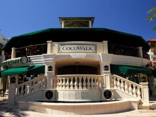 Coconut Grove Serenity Home