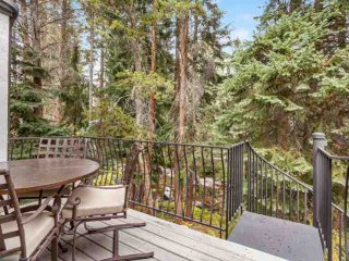 East Vail Home on Gore Creek, Private Hot Tub, Easy Bus Stop Access, Ideal
