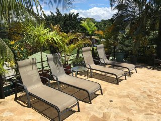 loungers on left side of pool (6 in total)