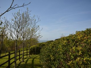 41814 Cottage in Woolacombe, Croyde