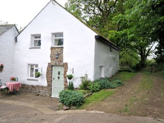 DIPPL Cottage in Bucks Mills, Welcombe