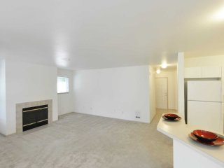 Beautiful 1 Bedroom Apartment, Kenmore