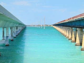 Caribbean Life in the Florida Keys., Big Pine Key
