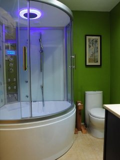 Spa unit with jetted tub, chromotherapy lights, steam and rain shower
