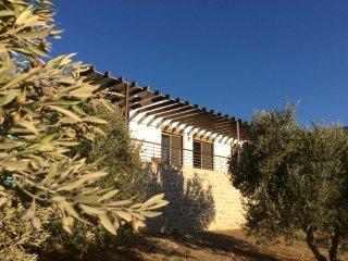 Villa Astoria, 4 personnes, vue mer et montagne, Pitsidia