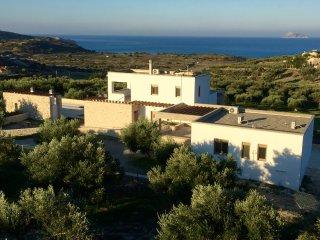 Villa Parea, jusqu'à 10 personnes dans 2 villas, Pitsidia